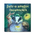 Intr-o noapte intunecata