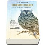 Nick Bostrom - Superinteligenta - Cai, Pericole, Strategii
