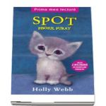 Spot, pisoiul furat de Holly Webb