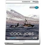 Cool Jobs Beginning Book with Online Access (David Maule)