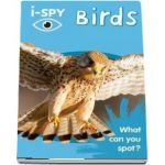 i-SPY Birds: What Can You Spot?