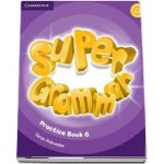 Super Minds. Practice book Level 6