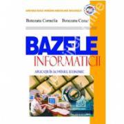 Bazele informaticii - aplicatii in domeniul economic