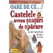 OARE DE CE. Castelele aveau santuri de aparare ?