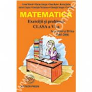 Matematica Exercitii si probleme pentru clasa a VI-a, semestrul al II-lea