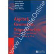 Algebra, geometrie, trigonometrie. Culegere de probleme. Clasa a IX-a
