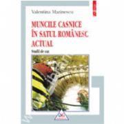 Muncile casnice in satul romanesc actual. Studii de caz