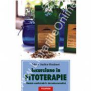 Incursiune in fitoterapie. Plantele medicinale in dermatocosmetica