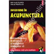 Incursiune in acupunctura. Numarul de aur in structura si energetica sistemelor vii