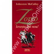 Zorro loveste din nou