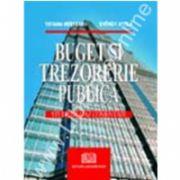 Buget sii trezorerie publică - Studii de caz comentate