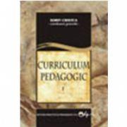 Curriculum Pedagogic