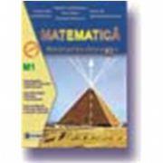 Matematica manual - profil M1, pentru clasa a XI-a