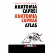 ANATOMIA CAPREI - ATLAS