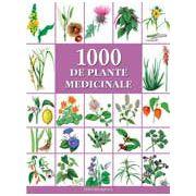 1000 plante medicinale