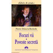 FOCURI VII - POVESTE SECRETA
