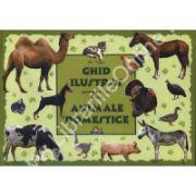 Ghid ilustrat pentru cei mici despre ANIMALE DOMESTICE