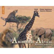 Animalele Africii