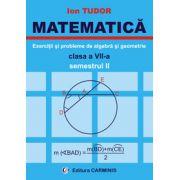 Exercitii si probleme de algebra si geometrie. Clasa a VII-a. Semestrul II