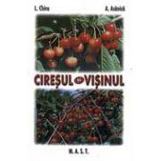 Ciresul si visinul (L. Chira)