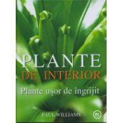 Plante de interior. Plante usor de ingrijit