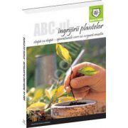 ABC-ul ingrijirii plantelor. Etapa cu etapa, operatiunile care va asigura reusita