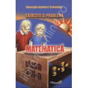 Exercitii si probleme matematica clasa a VI-a