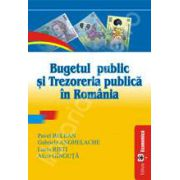 Bugetul public si trezoreria publica in Romania