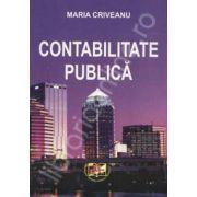 Contabilitatea publica