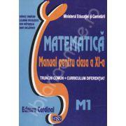 Matematica. Manual pentru clasa a XI-a. Trunchi comun + curriculum diferentiat. M1