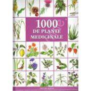 O mie de plante medicinale