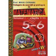 Matematica. Culegere de exercitii si probleme - clasele V-VI, Volumul I
