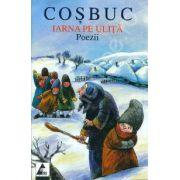 Poezii - Iarna pe ulita (Cosbuc)