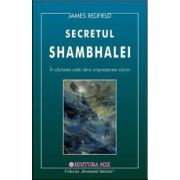 Secretul Shambhalei (In cautarea celei de a 11-a Viziuni)