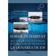Forme de habitat ale eneoliticului final si perioadei de tranzitie la Dunarea de jos