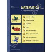 Matematica pentru clasa 1. Culegere de probleme