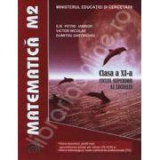 Matematica M2. Manual pentru clasa a XI-a ciclul superior al liceului