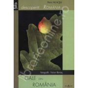 Gale din Romania