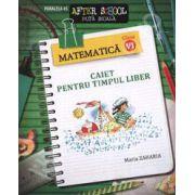 Matematica clasa a VI-a. Caiet pentru timpul liber