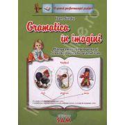 Gramatica in imagini (Planse pentru intelegerea si folosirea notiunilor gramaticale)