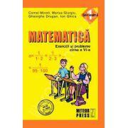 Matematica. Exercitii si probleme. Clasa a VI-a, semestrul I