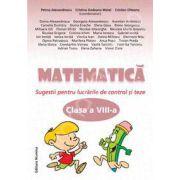 Matematica clasa a VIII-a, Sugestii pentru lucrarile de control si teze
