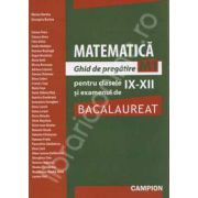 Bacalaureat 2011 Matematica  - Ghid de pregatire M1
