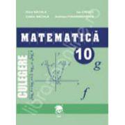 Culegere matematica clasa a X-a