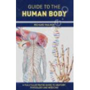 Guide to human body
