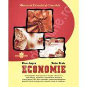 Manual de economie clasa a XI-a
