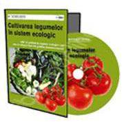 CD - Afaceri la Cheie. GHID PRACTIC. Cultivarea legumelor in sistem ecologic