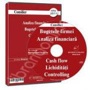 CD - Analiza financiara, Bugetele firmei, Cash flow, Lichiditati, Controlling