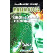 Matematica exercitii si probleme pentru clasa a XII-a