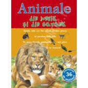 Animale din jungla si din savana - Picto-abtibilduri cu animale